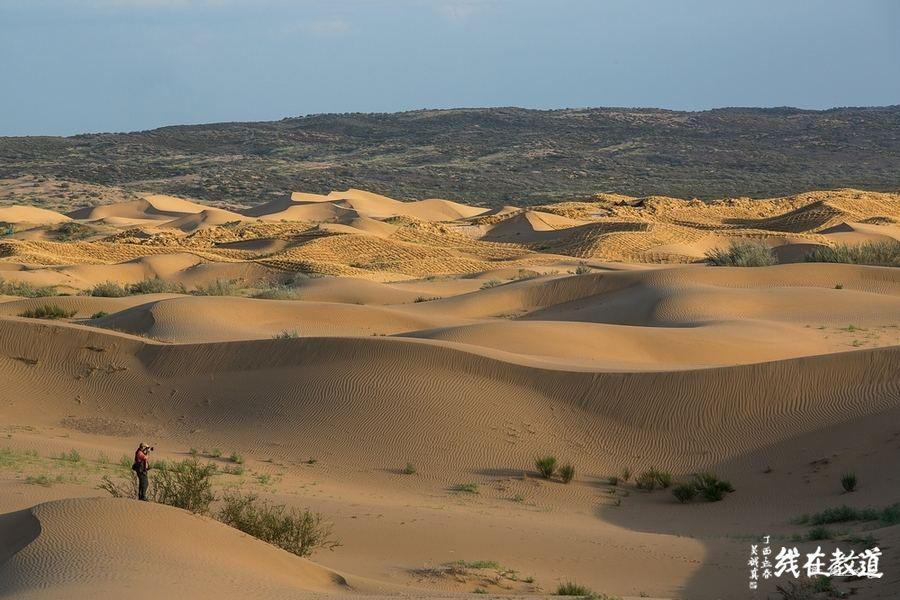 李景平:从毛乌素沙漠消失看天地之道与修身大道的社会重任